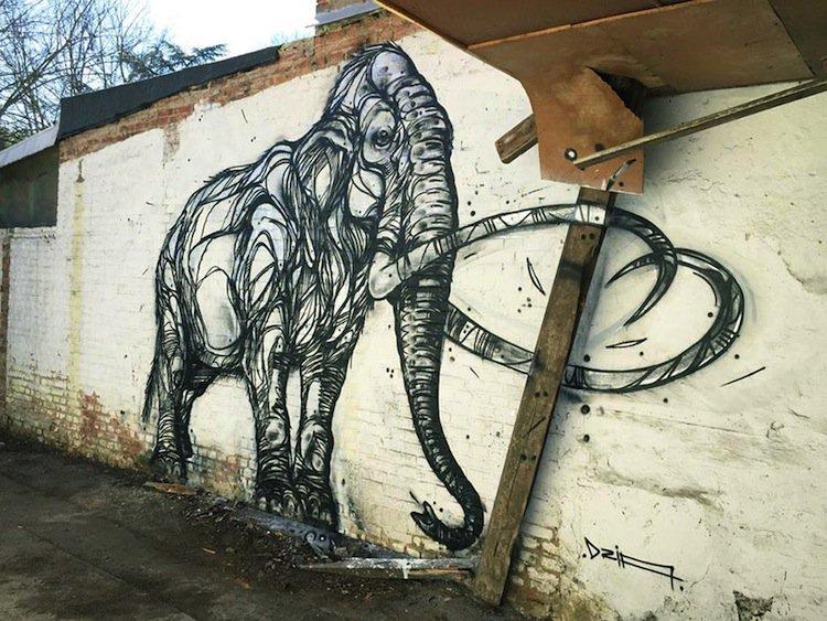 dzia-elephant