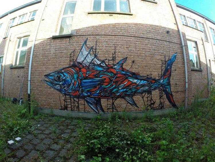 dzia-fish