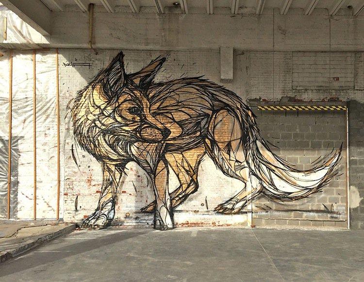 dzia-fox