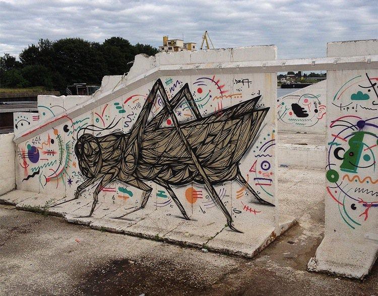 dzia-grasshopper