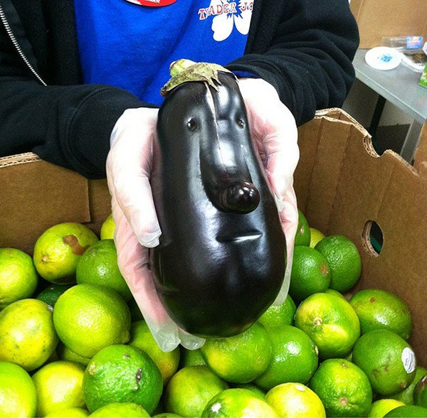 eggplant face