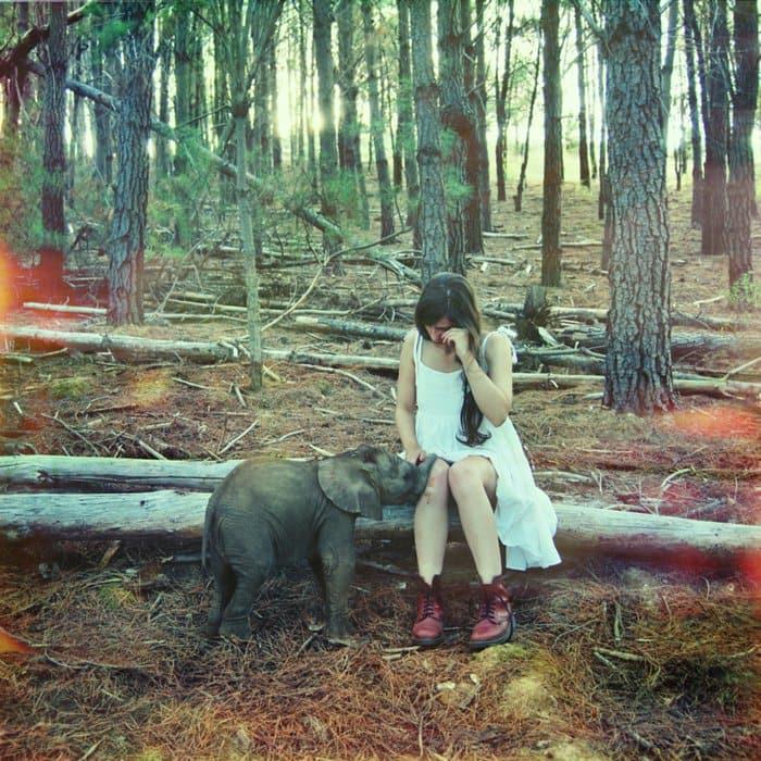 elephant crying girl
