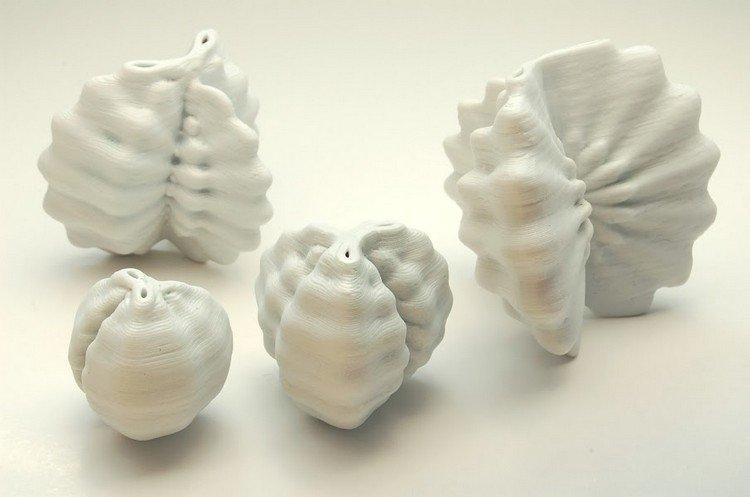 evolving morphology pots