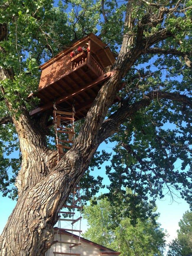 finished-treehous-ladder