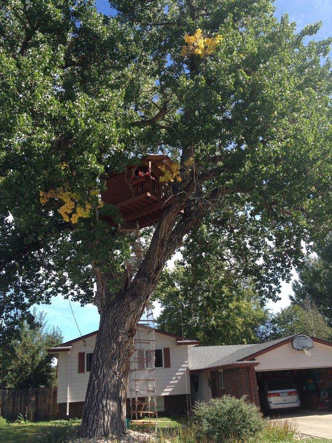 finished-treehouse-awesome