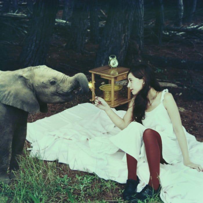 girl elephant