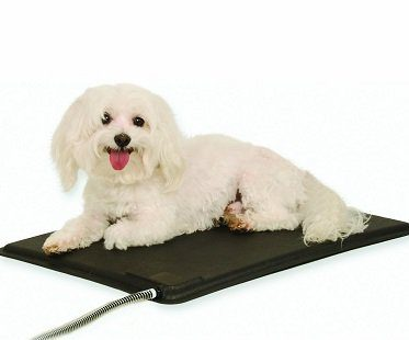 heated kennel pad small