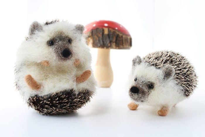 hedgehogs toadstool