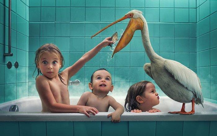 john-wilhelm-pelican