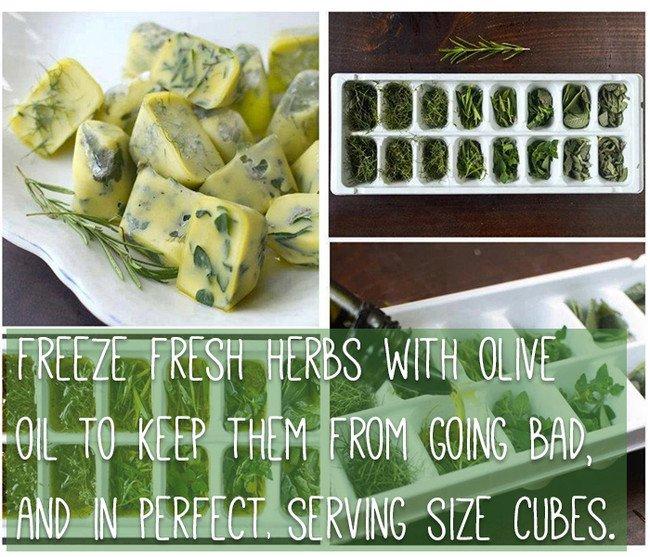 keep-food-fresh-herbs