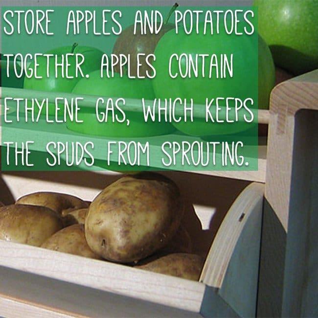 keep-food-fresh-potatoes