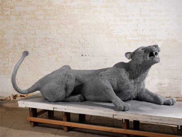 kendra-haste-big-cat
