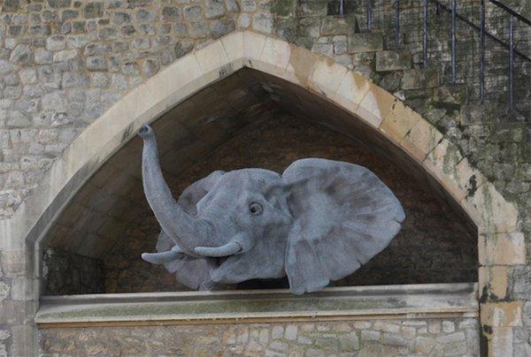 kendra-haste-elephant
