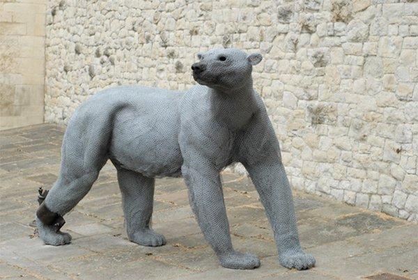 kendra-haste-polar-bear