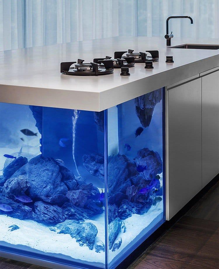 kitchen-aquarium-three