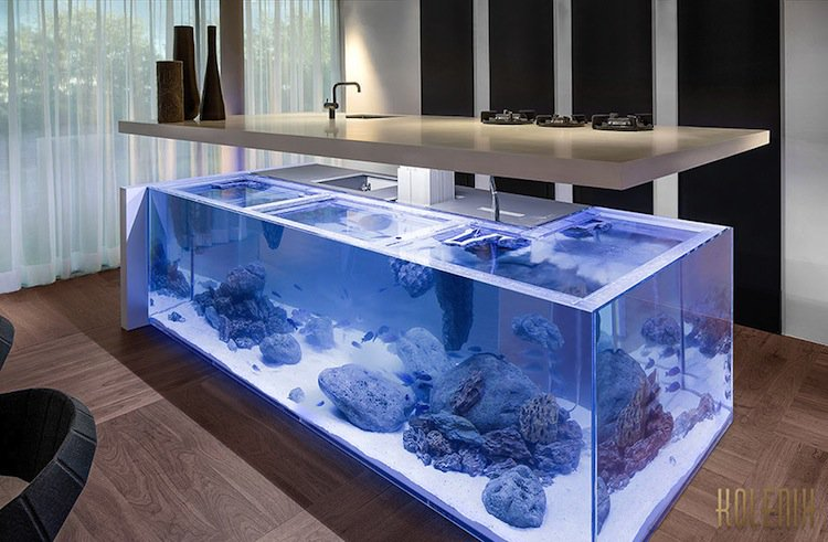 kitchen-aquarium-two
