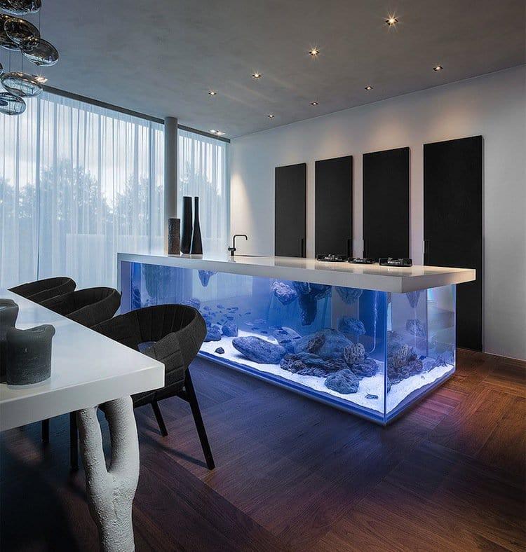kitchen-aquarium