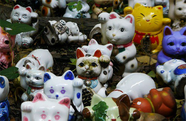 lucky cats close up