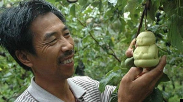 man smiling buddha pear