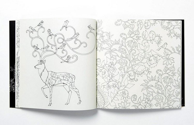 Open Book Deer Instagram Enchanted Forest