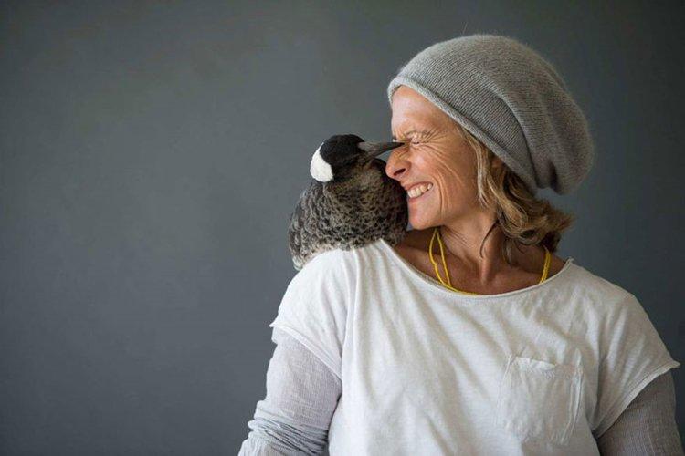 penguin-rescued-magpie-hug