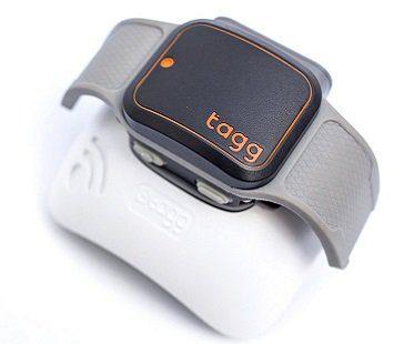 pet gps tracker collar attachment tagg