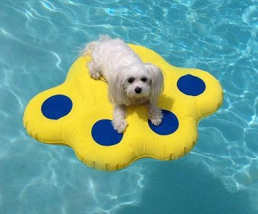 puncture resistant dog pool float