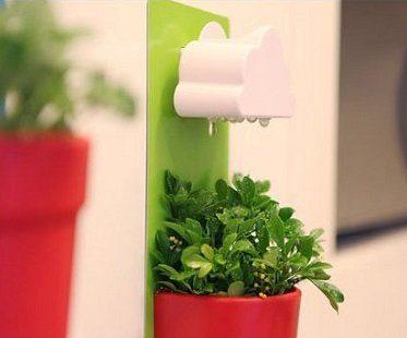 rain cloud watering pot drips