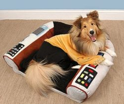 star trek dog bed