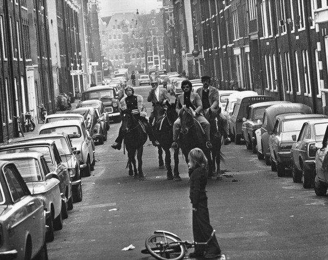 strange-history-horses