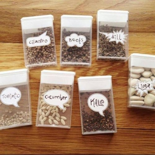 tic-tac-container-seeds