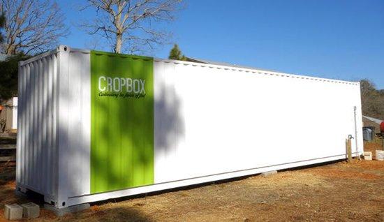 top-cropbox