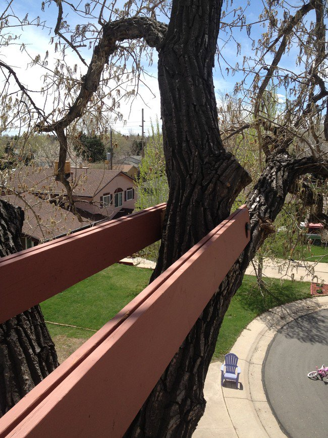 treehouse-secure-beams