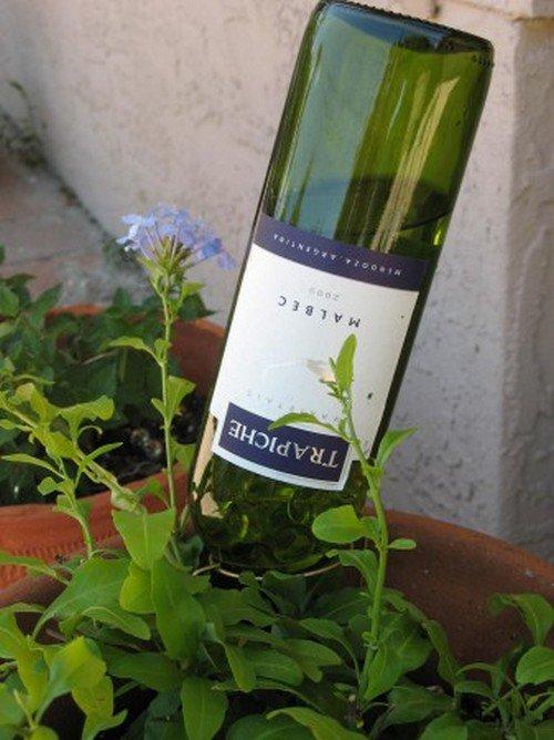 wine bottle waterers