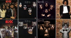 Album Covers Recreated Kittens