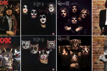 Album Covers Recreated Kittens