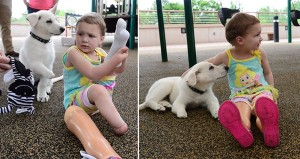 Amputee Girl And Puppy
