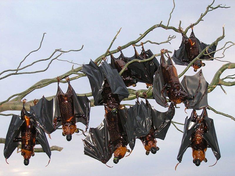 Bottle Bats