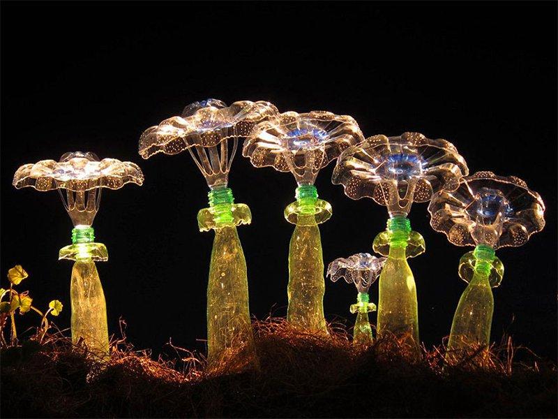 Bottle Mushrooms