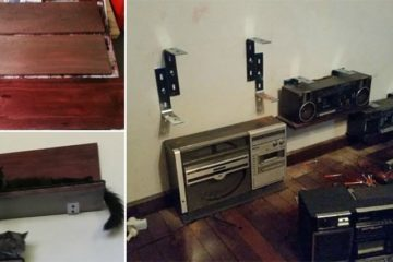 DIY Cat Storage Shelves