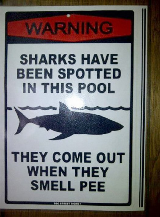 Dont Pee Sharks Spotted