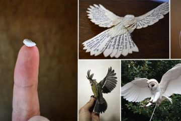 Handmade Sculptures of Birds