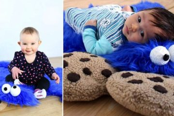 Cookie Monster Rug With Cookie Pillows