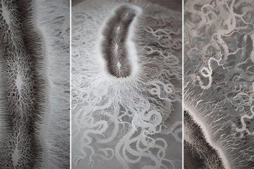 Rogan Brown Paper Microbe
