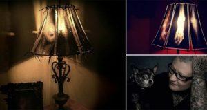 animal X-ray Lamps