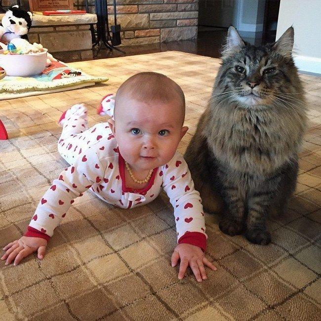 baby necklace proud cat