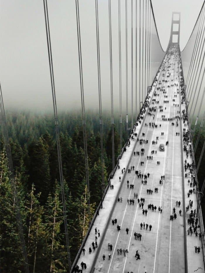 bridge merve ozaslan