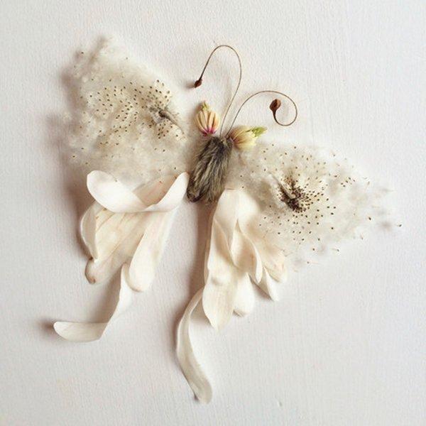 bridget-beth-collins-butterfly