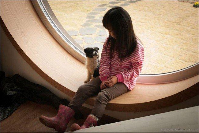 camera cafe girl dog