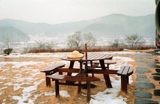 camera cafe picnic table